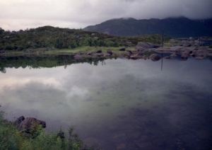 From Lofoten 2-1995 Copyright by Anny Langer