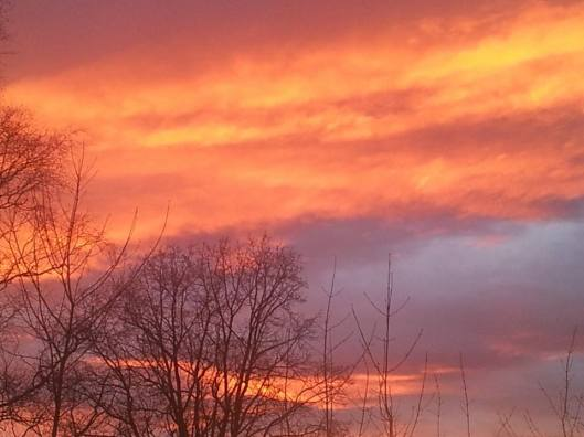 solnedgang 241114